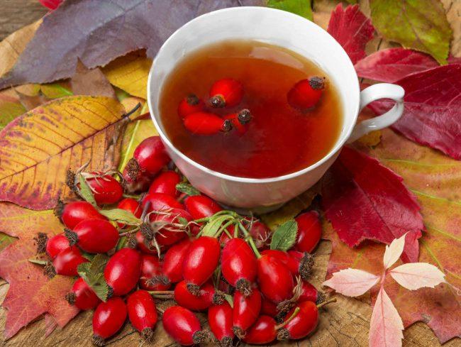 Чай из шиповника: польза и вред
