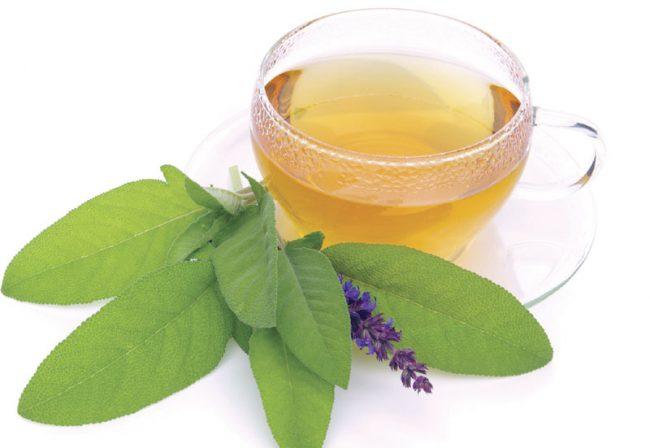 Чай из шалфея: польза и вред