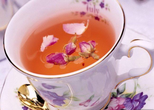 Кипрейный чай: польза и вред