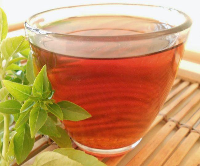 Польза и вред базиликового чая