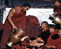 Уникальный тибетский чай чайсума