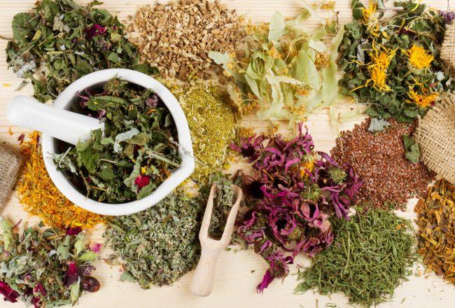 Лечебные свойства травяных чаев