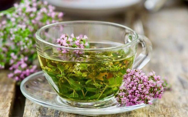 Как принимать чай из чабреца: рекомендации и рецепты