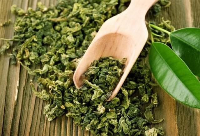 полезные свойства зелёного чая научно доказанные