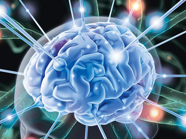 Влияние кофе и кофеина на сосуды головного мозга - расширяет или сужает