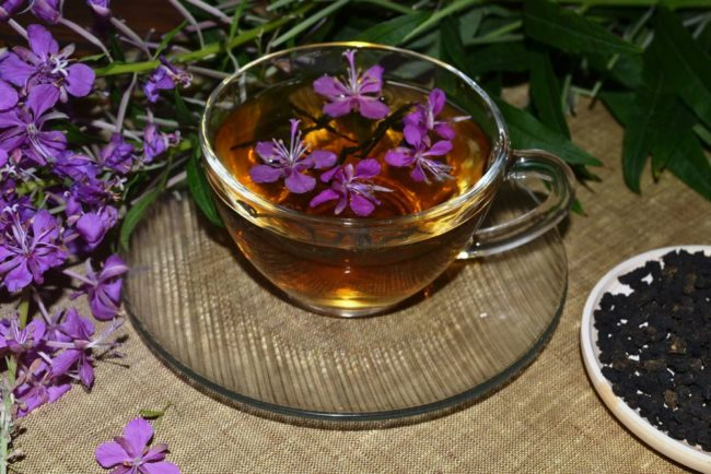 иван-чай при лечении онкологии