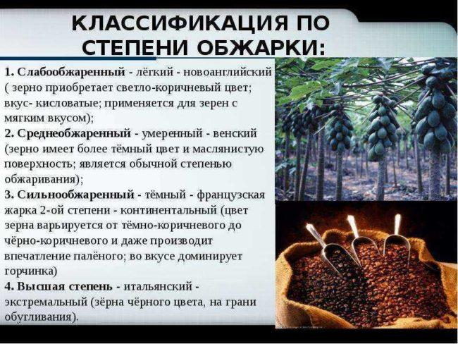 обжарка кофе - виды обжарки