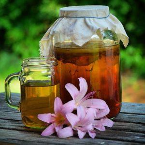 чайный гриб для похудения полезные свойства