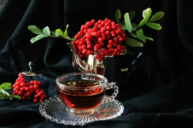 полезные свойства ягод рябины
