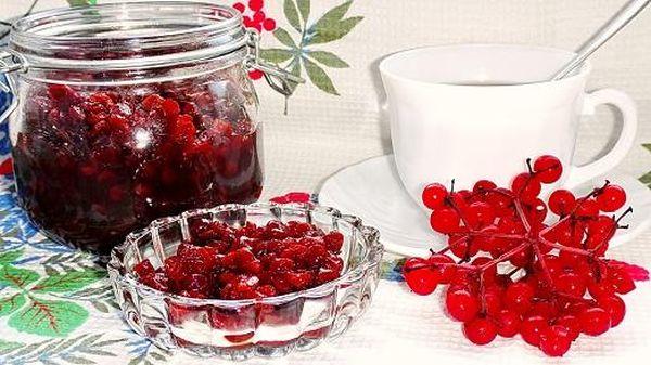 чай с калиной: состав, рецепты