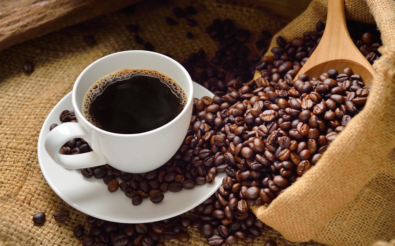 элитный кофе жаку берд