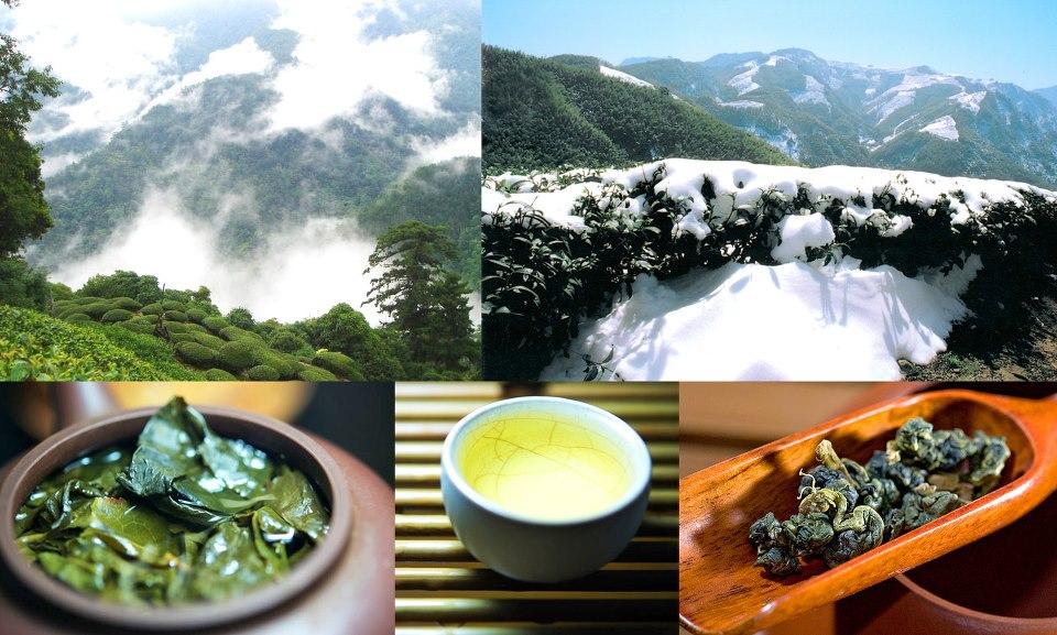 Молочный Улун Зеленый чай Най Сян Цзинь Сюань