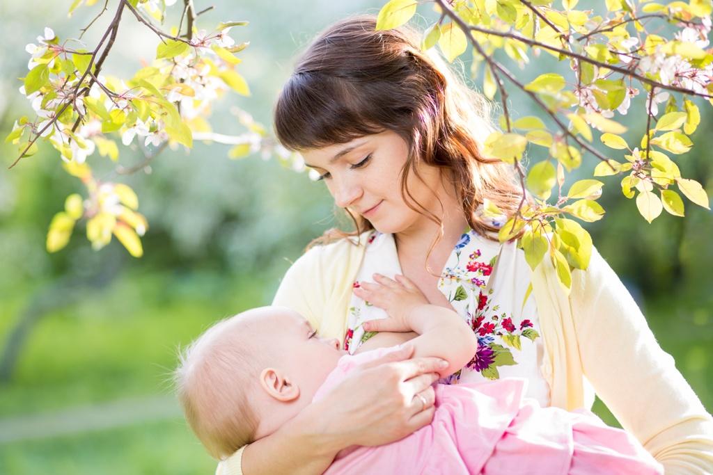 Чай для повышения лактации кормящим мамам: польза и виды чая для лактации