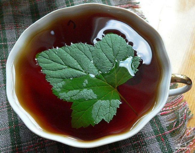 как заваривать чай из листьев смородины