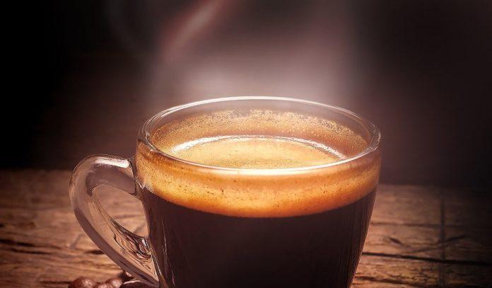 сорт кофе робуста - что это за кофе