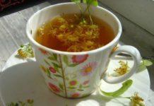 липовый чай - целебные свойства