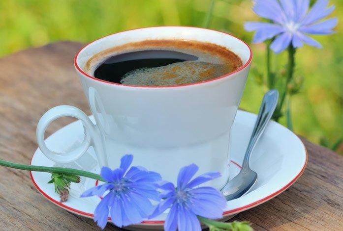 кофе из цикория противопоказания