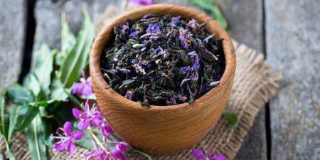 как хранить иван-чай