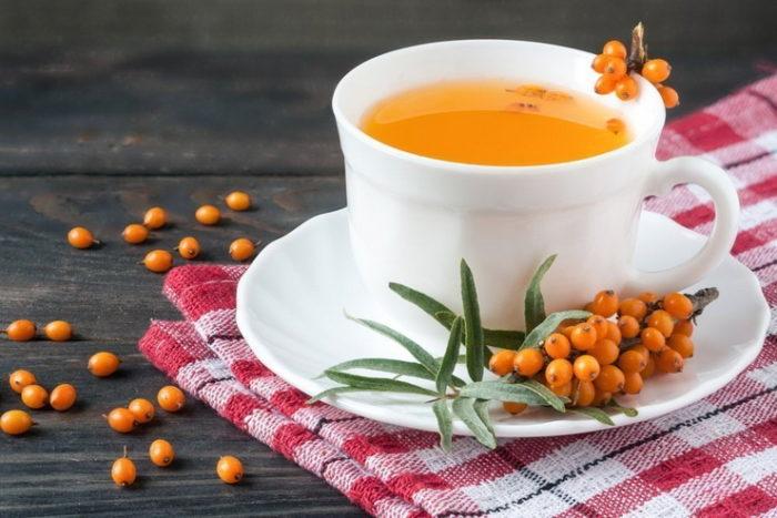 целебные свойства облепихового чая